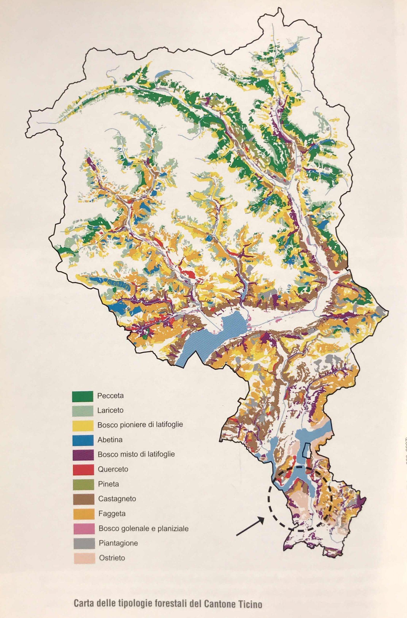 Carta tipologie forestali Canton Ticino
